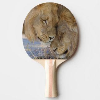 Zwei Löwen, die sich reiben Tischtennis Schläger