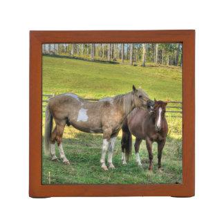 Zwei lustige PferdeFotos der Ranch-Pferdefreunde Stifthalter