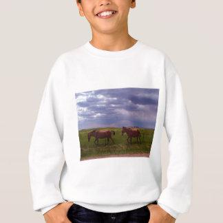 Zwei Maultiere Sweatshirt