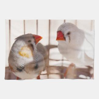Zwei niedliche Fink-Vögel im Käfig Küchentuch