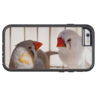 Zwei niedliche Fink-Vögel im Käfig Tough Xtreme iPhone 6 Hülle