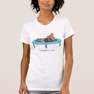 Zwei niedliche Katzen auf Trampolinemalerei, T-Shirt