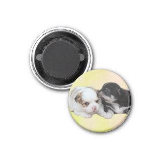 Zwei niedliche Welpen (Hunde) Runder Magnet 3,2 Cm