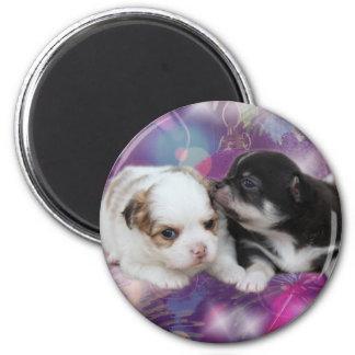 Zwei niedliche Welpen (Hunde) Runder Magnet 5,1 Cm