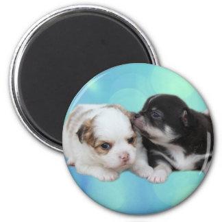 Zwei niedliche Welpen (Hunde) Runder Magnet 5,7 Cm