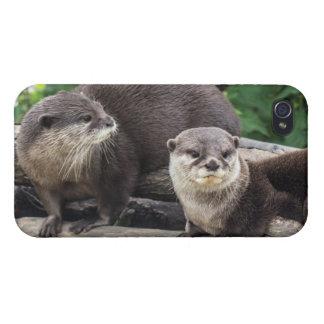 Zwei niedlicher Otter der Otter-| iPhone 4/4S Case