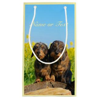Zwei niedliches Dackel-HundDackel Foto Kleine Geschenktüte