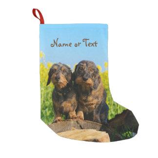 Zwei niedliches Dackel-HundDackel Freund-Haustier Kleiner Weihnachtsstrumpf