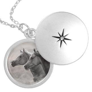 Zwei Pferde, die Geschenkschwarze Stallions malen Medaillon