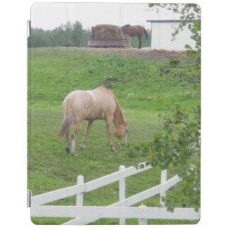 Zwei Pferde iPad Hülle