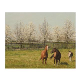 Zwei Pferde und ein Esel, der im Frühjahr weiden Holzleinwand
