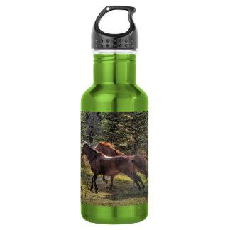 Zwei Ranch-Pferde, die in Wald laufen Trinkflasche