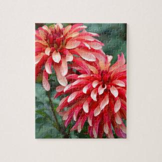 Zwei rosa Dahlie-Blumen Puzzle