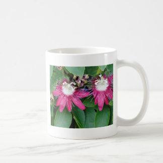 Zwei rote Leidenschafts-Blumen-Nahaufnahme draußen Kaffeetasse