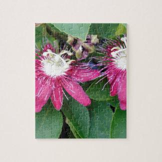 Zwei rote Leidenschafts-Blumen-Nahaufnahme draußen Puzzle