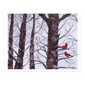 zwei rote Vögel im Winter, Copyright 2005 Postkarte