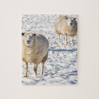 Zwei Schafe stehend im Schnee während des Winters Puzzle