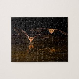 Zwei Schläger, die über Wasser, Arizona fliegen Puzzle