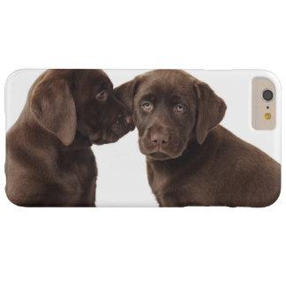 Zwei Schokolade Labrador retriever-Welpen Barely There iPhone 6 Plus Hülle