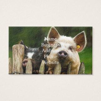 Zwei Schweine - Schweinezuchtbetrieb - Visitenkarte