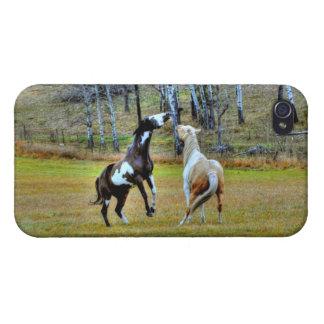 Zwei spielerische Pinto-Farben-Pferdepferdeartiger iPhone 4/4S Hülle