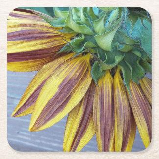 Zwei Ton-Sonnenblume-Kopf mit Blumen Rechteckiger Pappuntersetzer
