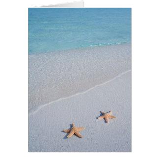 Zwei von uns | Ozean-LiebeStarfish Grußkarte