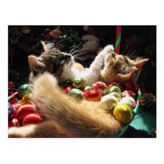 Zwei WeihnachtsMiezekatze-Katzen, Kätzchen Postkarte