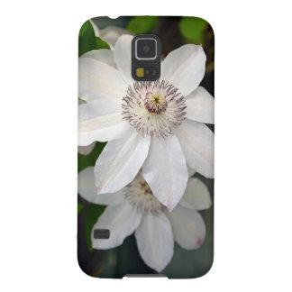 Zwei weiße Clematis-Blumen Samsung S5 Cover