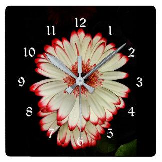 Zwei weiße Gerbera-Gänseblümchen-Blumen Quadratische Wanduhr