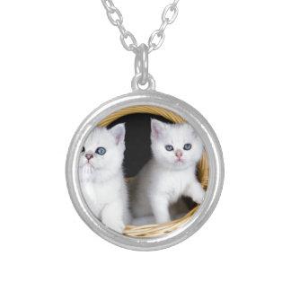 Zwei weiße Kätzchen im Korb auf schwarzem Versilberte Kette