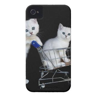 Zwei weiße Kätzchen mit Einkaufswagen auf iPhone 4 Hülle