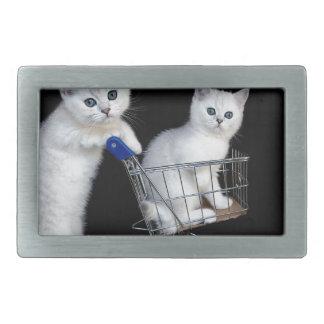 Zwei weiße Kätzchen mit Einkaufswagen auf Rechteckige Gürtelschnalle