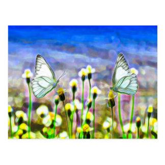 Zwei weiße Schmetterlinge in einer gelben Postkarte