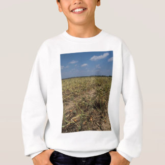Zwiebel-Feld-Landschaft in Georgia Sweatshirt