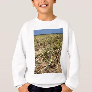 Zwiebel-Feld-Landschaft Sweatshirt
