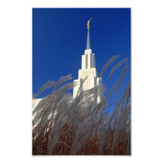 Zwilling fällt mormonischer Tempel Idahos LDS Fotodruck