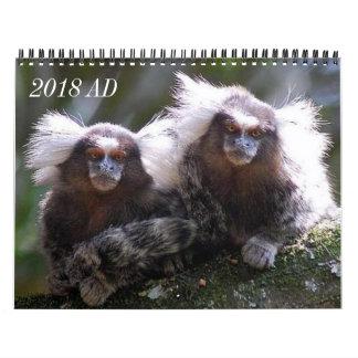 Zwölf Affen Abreißkalender