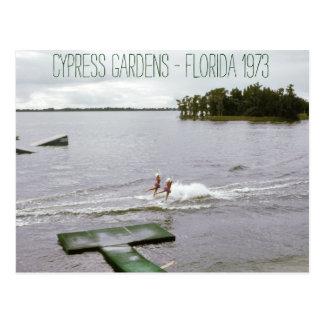 Zypresse-Garten-Wasser-Ski-Show-Vintages Postkarte