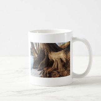 Zypresse-Wurzeln Kaffeetasse